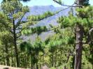 Die Landschaft 10
